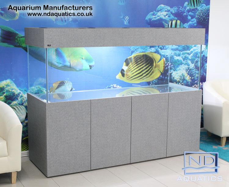 72x24x24 Tropical fish tank.