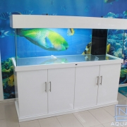 72x24x24 Marine aquarium. White High Gloss Acrylic . Fusion Style