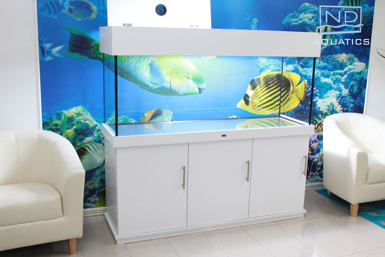 ND-Aquatics-gloss-range