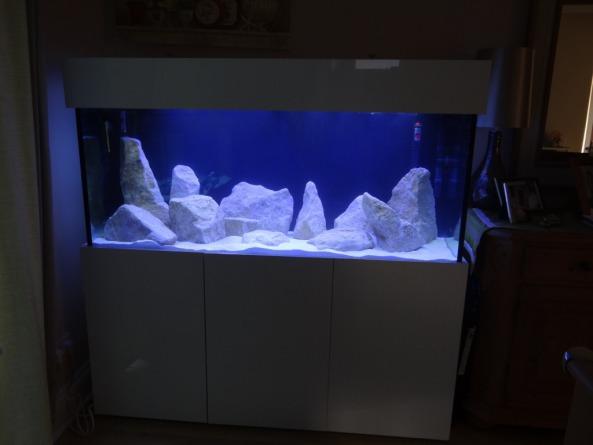 custom made 50x24x24 marine aquarium aquarium manufacturers   nd aquatics ltd