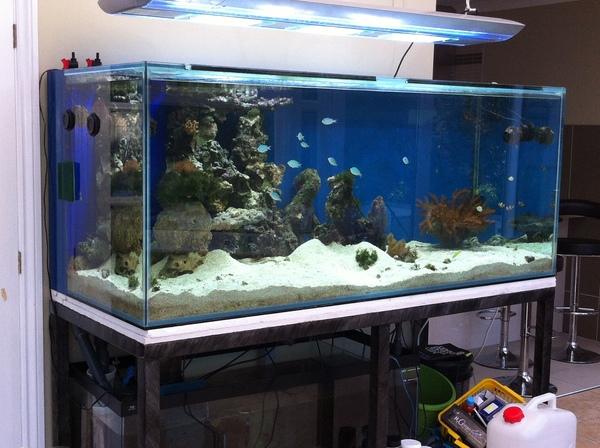 Clearance | Aquarium Manufacturers - ND AQUATICS LTD