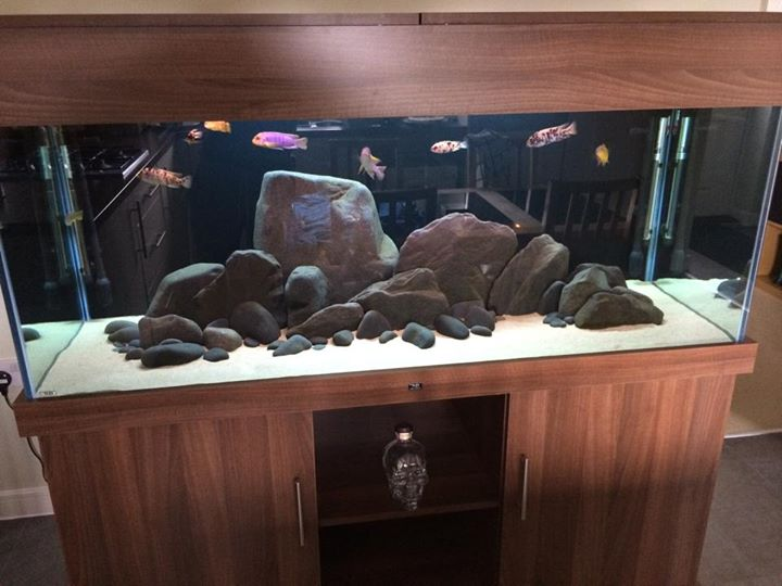 nd-aquariums-2