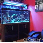 48x24x18marine_fishtank_750