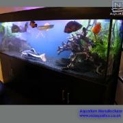 96x30x24-tropical-aquarium