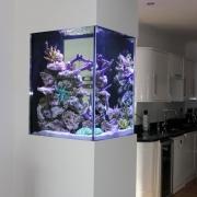 marine-fish-tank-made-by-nd-aquatics-05_16_0