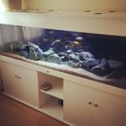 nd-aquariums-1