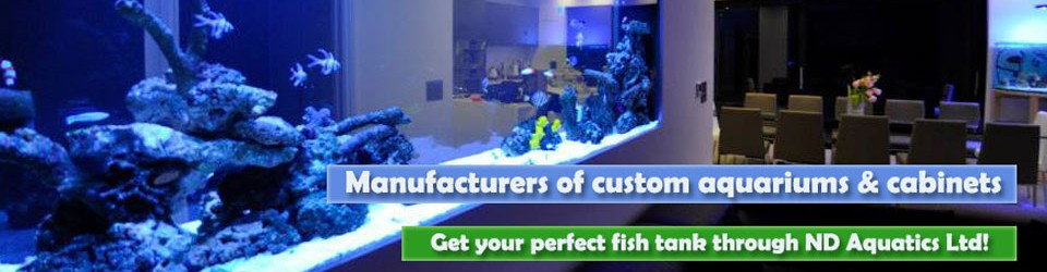 Get your perfect fish tank through ND Aquatics