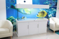 ND Aquatics LTD Tropical Fish Tank