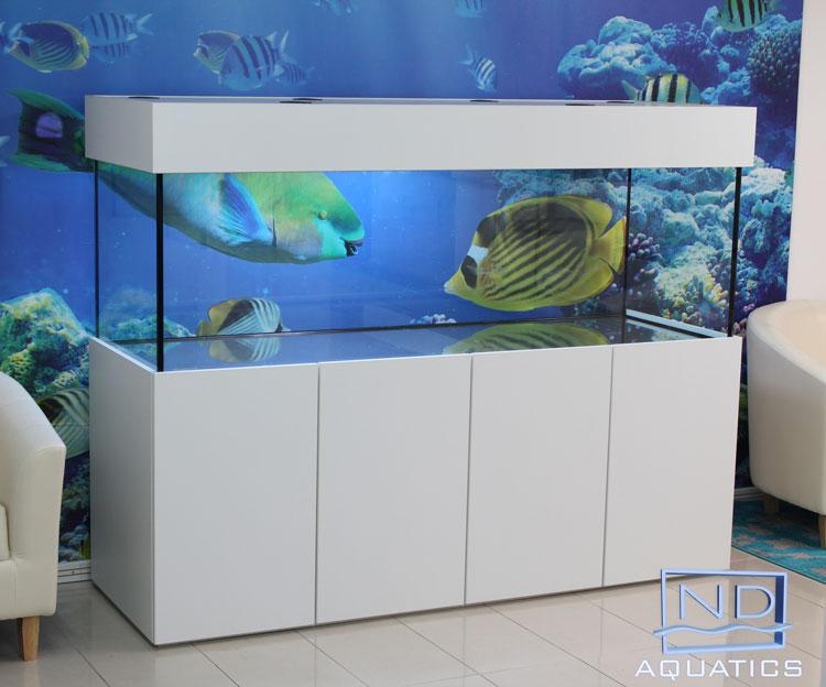 Etonnant 84u2033 X 24u2033 X 24u2033 Tropical Aquarium U0026 Cabinet | Aquarium Manufacturers   ND  AQUATICS LTD